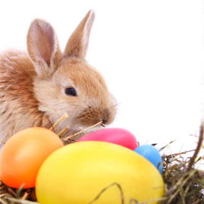 Easter egg hunt activities in South Orange County