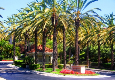monarch_beach_gated_homes